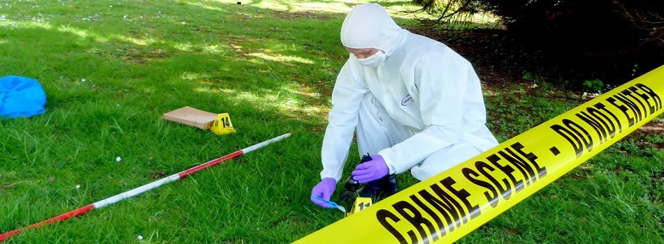 Investigate how to further your forensic career